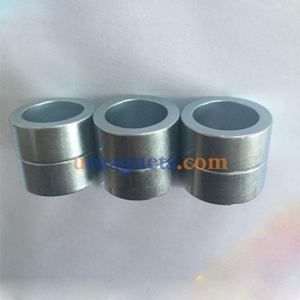 Diametrically Magnetized Rings